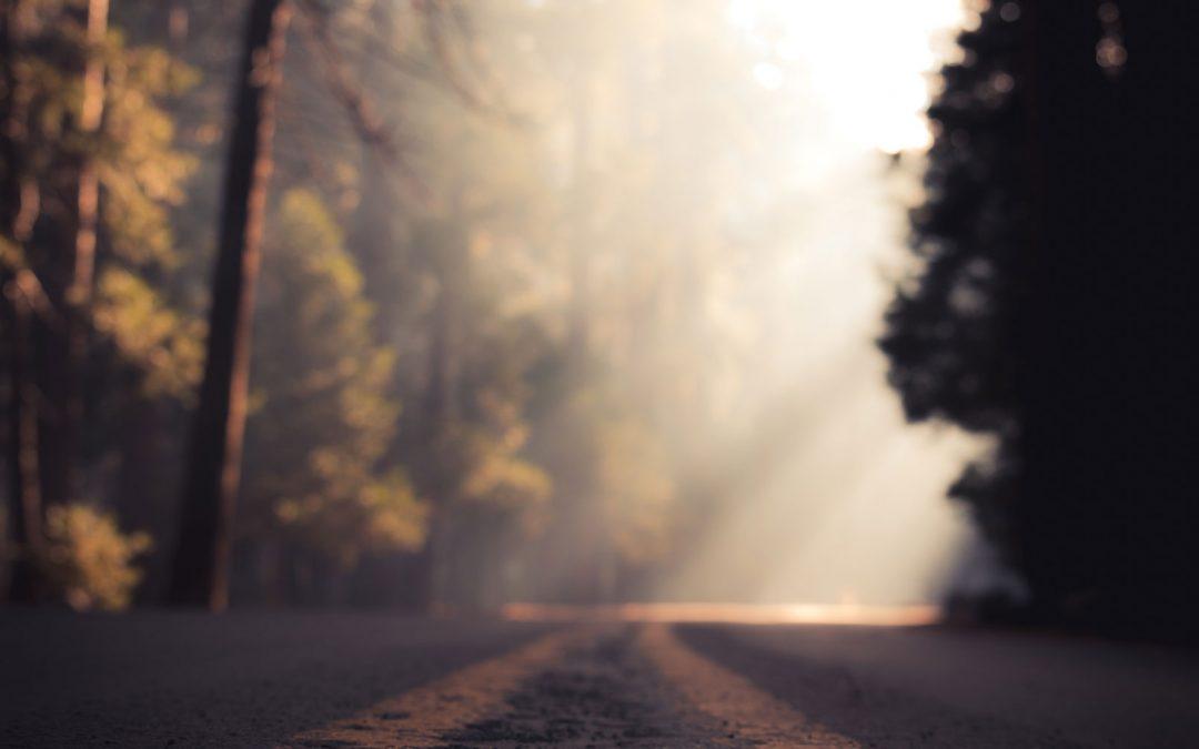 Het pad van bewustzijn